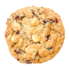 Oatmeal Cranberry White Chocolate Chip